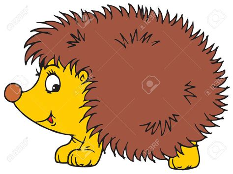 Hedgehog Clipart Hedgehog Clipart Vector Pencil And In Color Hedgehog