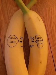 Humor Funny Fun Free Photo On Pixabay