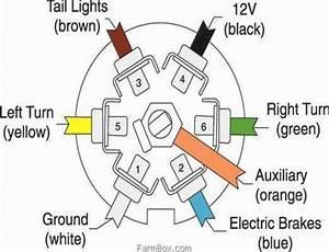 Curt Wiring Diagram 7 Blade