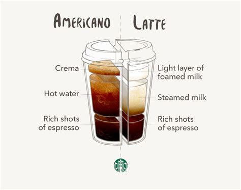 The prolonged heat exposure has also taken most of the caffeine out of the bean. Americano vs. Latte | More Starbucks and Latte ideas