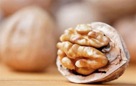 In Quali Alimenti Si Trova Il Magnesio by Quali Sono I Cibi Ricchi Di Magnesio Stetoscopio