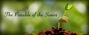 Sermon, Matthew, Chapter, 13, 1-9, 18-23, The, Parable, Of, The, Sower