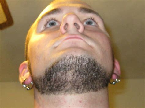Chin Curtain Vs Beard by My Chin Curtain Beard Board