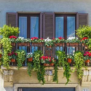 Welche Pflanzen Für Balkon : balkonpflanzen f r schattige balkone wohn journal ~ Michelbontemps.com Haus und Dekorationen