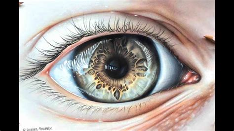 drawing  hyper realistic eye  coloured pencils youtube