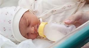 Beste Thermoskanne Baby : de beste voeding voor je baby zwangerschapswiki ~ Kayakingforconservation.com Haus und Dekorationen