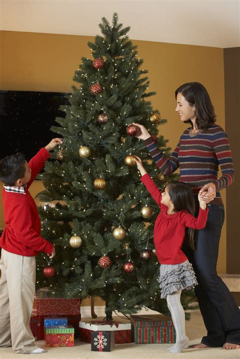 free christmas trees for low income families 5 things you need to about cutting your own tree the lakeside collection