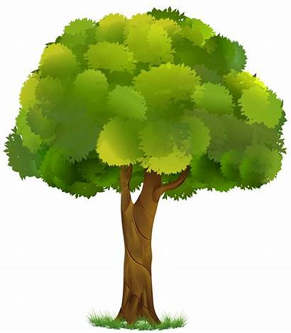 Tree Transparent Clip Clipart Trees Yopriceville Previous