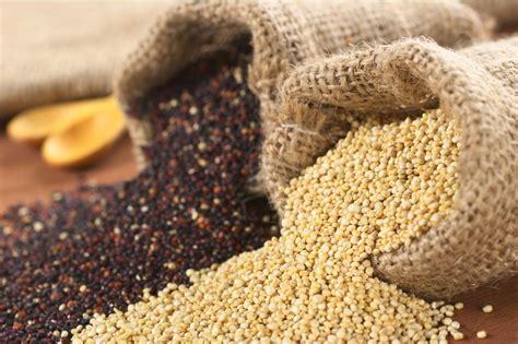 Kvinoja - odličen vir beljakovin - Aktivni.si