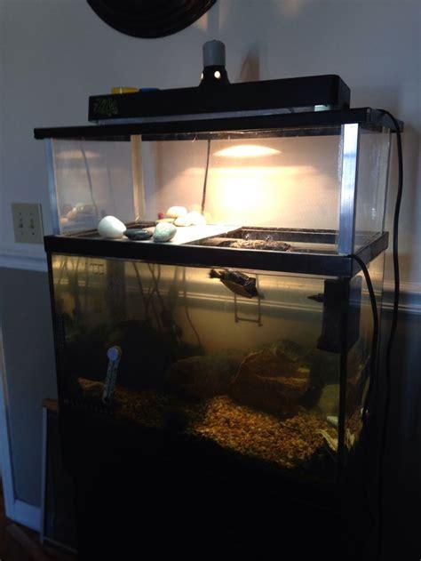 aquatic turtle basking light above tank basking area aka turtle 39 s penthouse