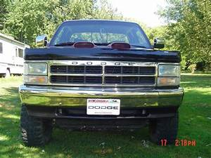 Dakotasweet2186 1995 Dodge Dakota Regular Cab  U0026 Chassis