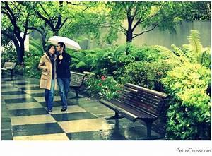 Walk in the rain - Petra Cross blog - Petra Cross