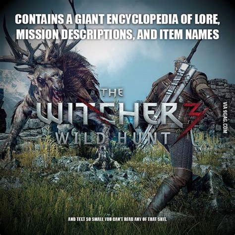 Witcher 3 Memes - pinterest the world s catalog of ideas