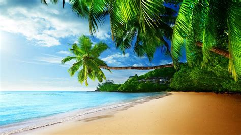 Animated Tropical Wallpaper - tropical waves screensavers and wallpaper 55 images