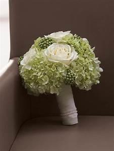 hortensien herbst