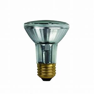 Flood light bulbs halogen : Watt halogen flood light bulbs bocawebcam