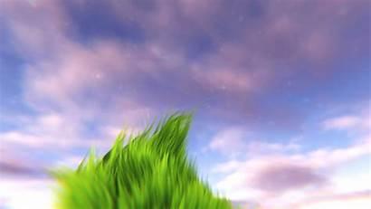 Animated Grass Animation Wallpapers Scene Desktop Nature