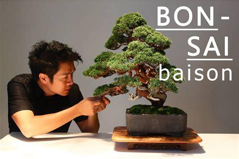 ฐานันดร์ ปฏิภานธาดา สถาปนิกผู้หลงใหลต้นไม้ขนาดเล็กที่ชื่อ ...
