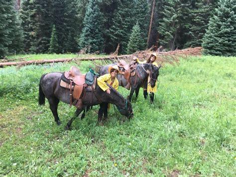 horseback vail riding stables