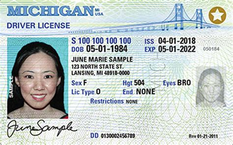 Michigan New Driver's License Application And Renewal 2019