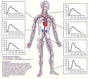 Лекарство от давления и повышенного пульса