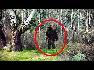 5 Crazy BIGFOOT Sightings Caught on Camera (2016) (Video ...