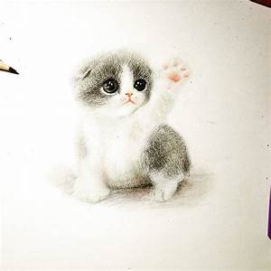 Adorable Animals Drawings to Cure Unhappiness – Fubiz Media