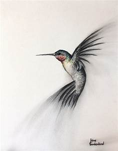 Hummingbird art | Hummingbird drawing, Bird drawings ...