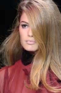 Light Brown Hair With Honey Highlights Honey Honey