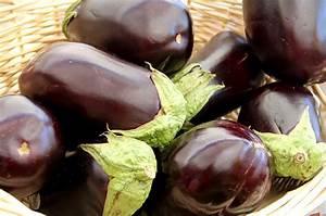 Paprika Gute Nachbarn : auberginen pflanzen pflegen und ernten wiressengesund ~ Frokenaadalensverden.com Haus und Dekorationen