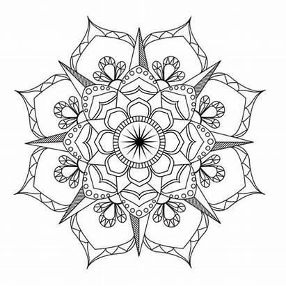 Mandala Coloring Flower Adult Therapy Pdf