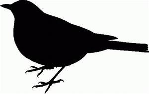 Black Bird Clipart