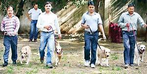 It's a dog's life for Delhi police's 'best friends': One ...