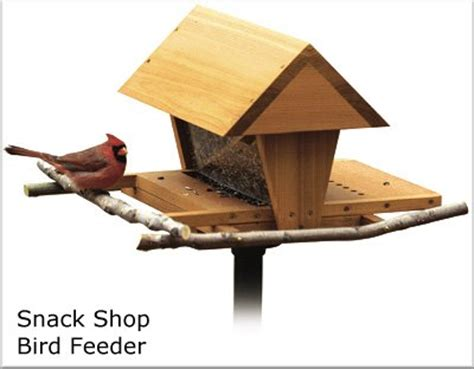 birdhouses birdfeeders shop plans