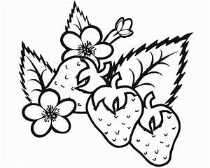 Free Coloring Pages Printable  Strawberry Coloring Pages