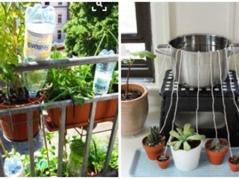 blumen und pflanzen automatisch bewaessern eat smarter