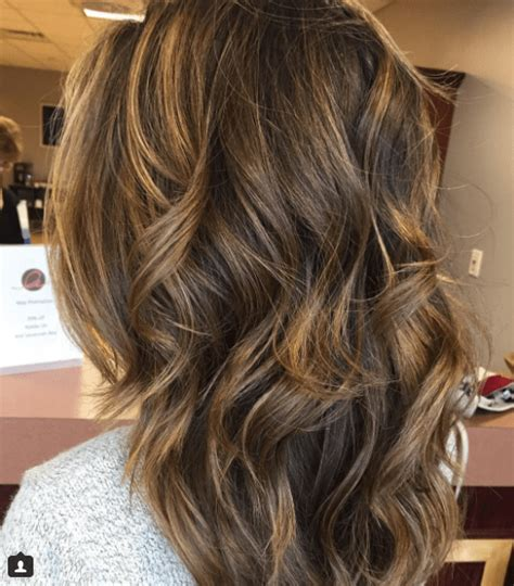 Brown Highlights On Brown Hair Ideas by 18 Honey Highlights Ideas You Should Check