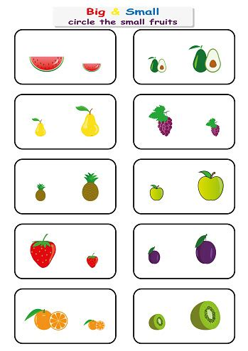 circle  small fruits find big  small worksheet
