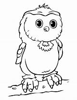 Coloring Owl Pages Cute Printable Popular sketch template