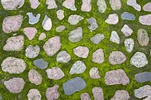 Comment Nettoyer Une Terrasse En Pierre : comment bien prot ger votre terrasse en pierre des mousses ~ Melissatoandfro.com Idées de Décoration