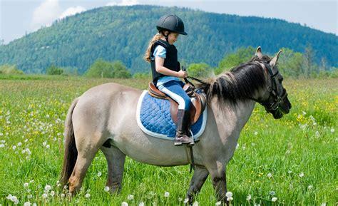 familienhotels mit pferden und reiten fuer kinder im