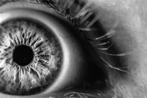 picture monochrome eye macro detail skin