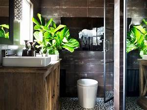 Plants To Grow In Your Bathroom HGTV