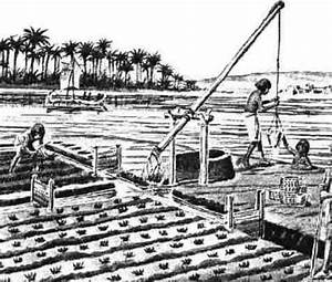 Agriculture in ancient Egypt , facts about farming in ...