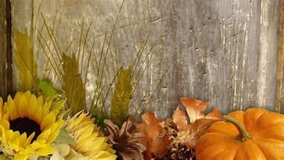 Fall Harvest Desktop Background Wallpapers Autumn Pumpkin