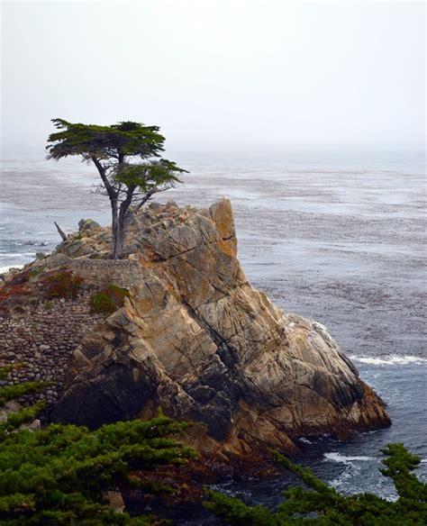 Liene's Adventures - Pa Kalifornijas dabas takām - no ...