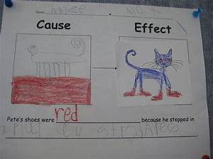 Finally in First: Pete the Cat Cause & Effect