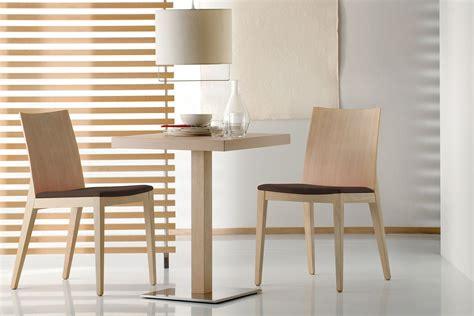 chaise séjour twig 429 chaise pedrali en bois de chêne ou hêtre et
