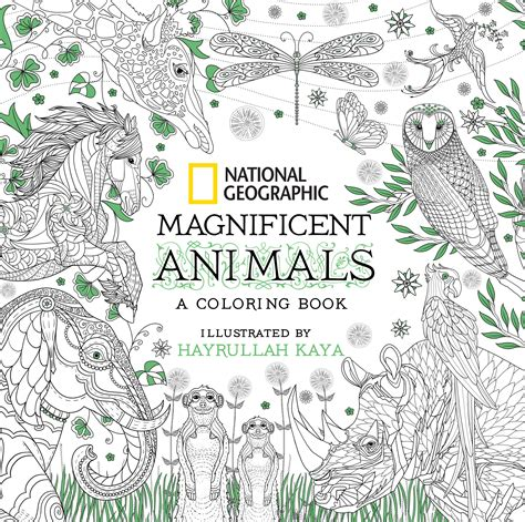national geographic magnificent animals  adult coloring