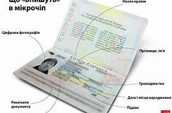 сколько стоит получить права россия